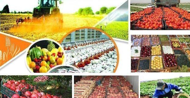 سامانه آنلاین فروش محصولات کشاورزی ارومیه وارد فاز اجرایی می شود