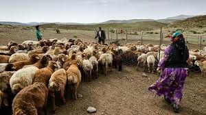 🔺اعطای تسهیلات به عشایر ارومیه و استان